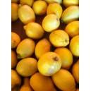 Citron Esp au Kilo ou par 100 Gr