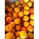 Abricot Rousillon